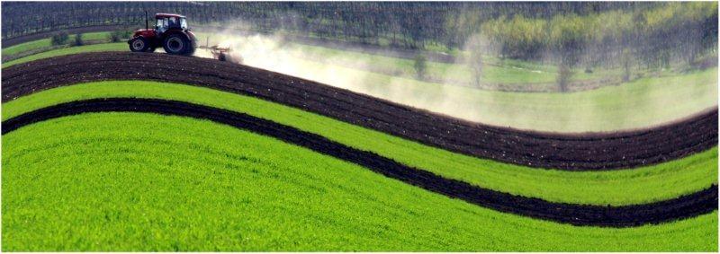Bognár Róbert::Zúg a traktor
