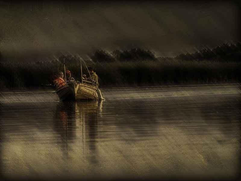 Stipsits Ibolya::Rain