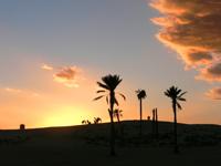 Sivatagi alkony